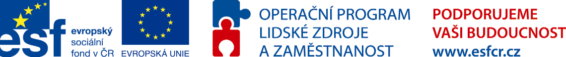 ESF - Operační program lidské zdroje a zaměstnanost